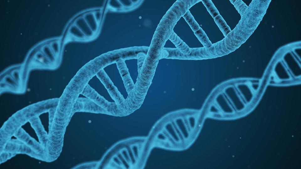 UCL scientists seek to advance gene editing
