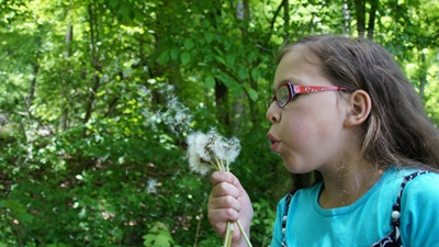 young girl blowing dandelions
