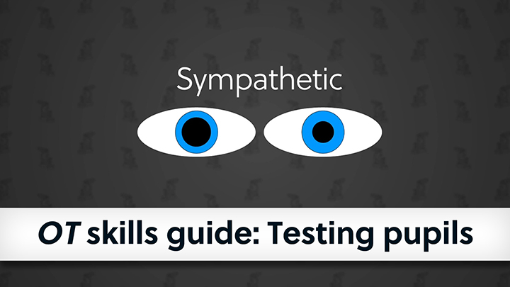 Banner cover image of testing pupils skills guide