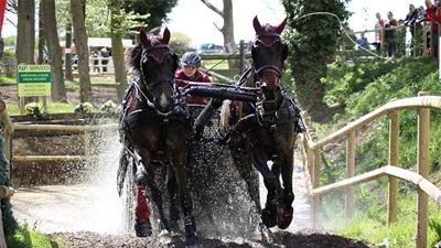 Horse Driving Trials