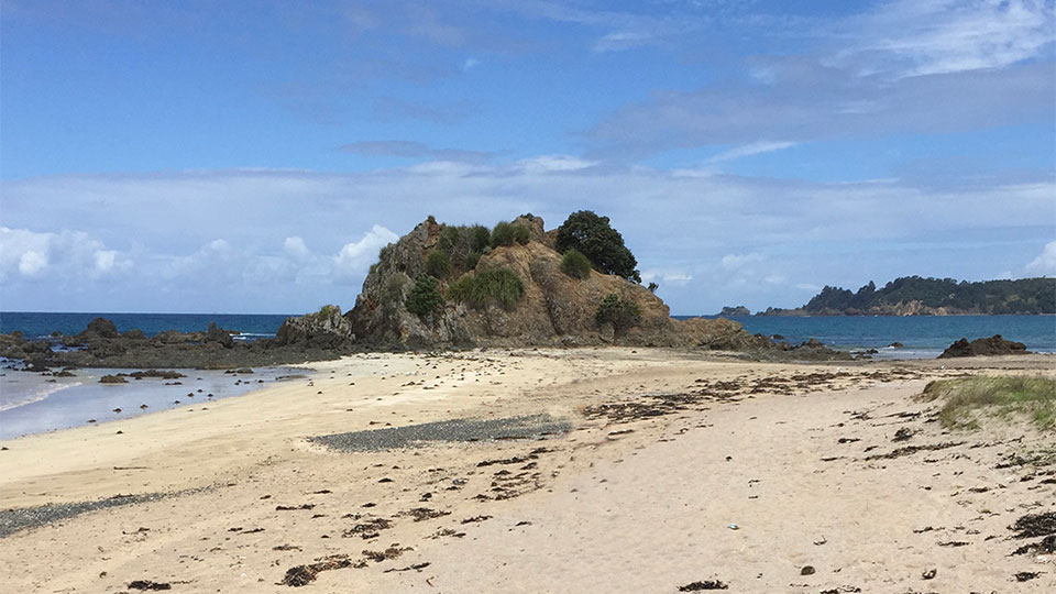 Mimiwhangata beach New Zealand