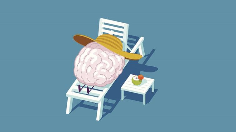 Brain on sunbed