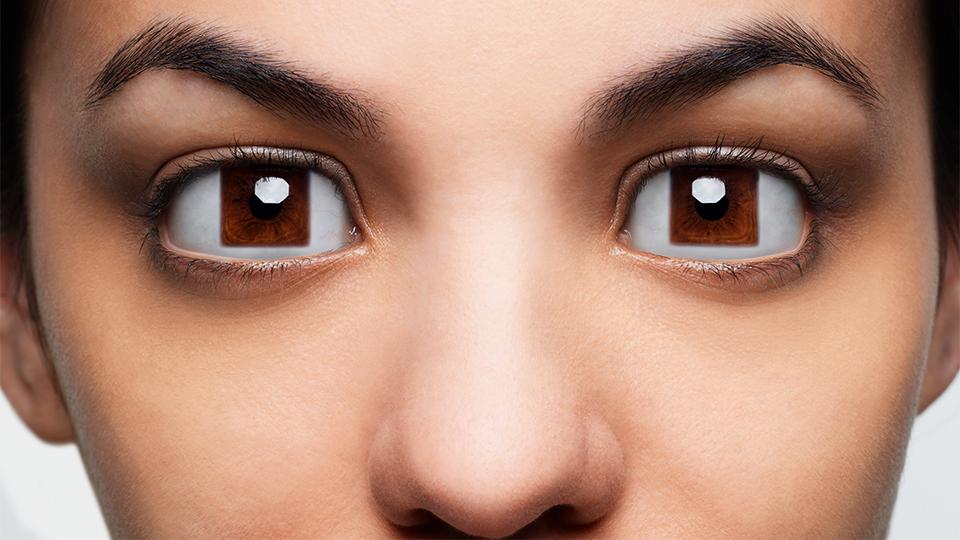 Hoya eyes image