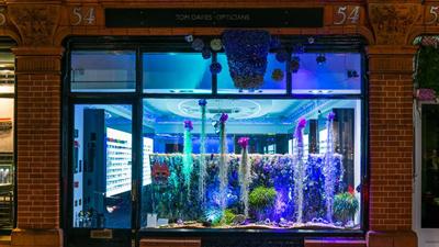 Tom Davies window display