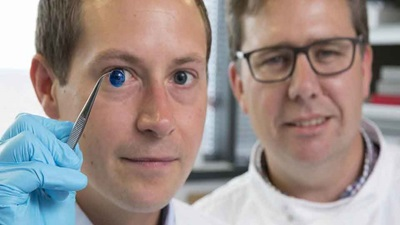 Researchers with a 3D cornea