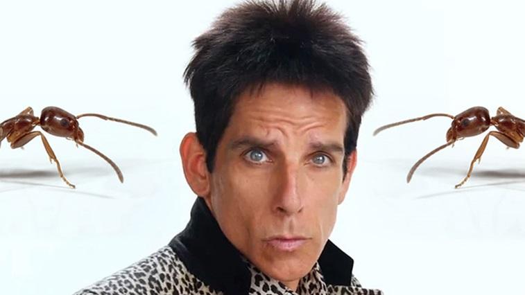 Derek Zoolander and ants