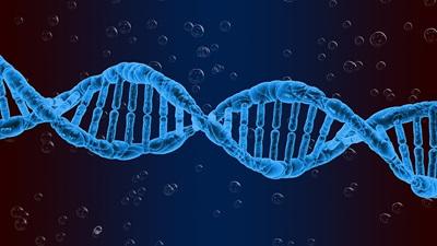 Genetic string