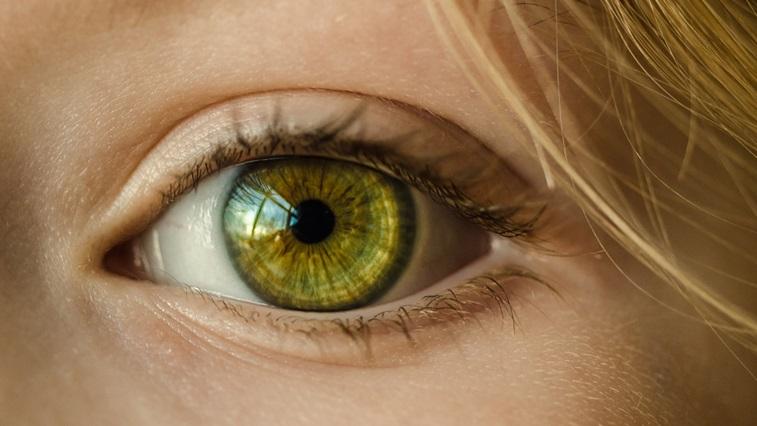 Child's green eye