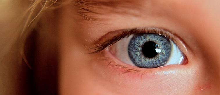 Closeup of a child's eye