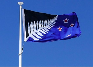 New Zealand flag 2 option